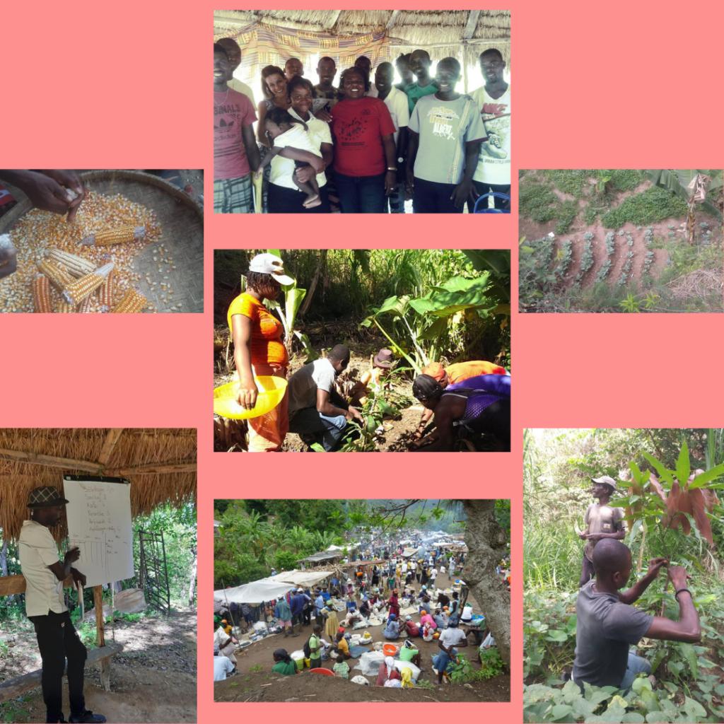 Renforcement des communautés paysannes, Boucan Carré, Centre, Haïti 14